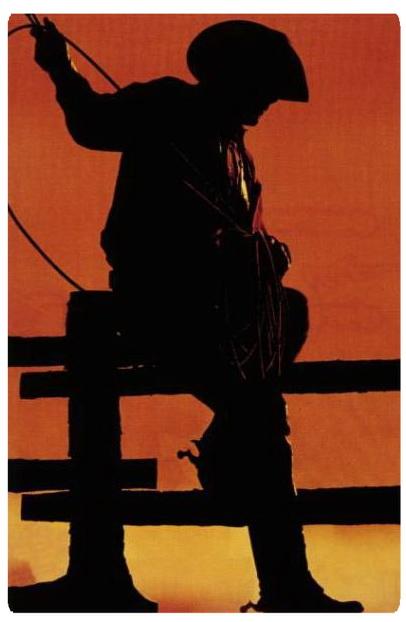 عکس ، عکاسی ، عکاس ، گرانترین عکس ، تاریخ هنر ، هنر ، حراجی, www.majidakhshabi.com، سایت رسمی مجید اخشابی