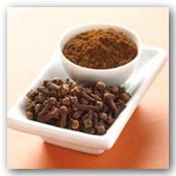 داروهای گیاهی میخک خواص مفید آن فواید میخک سایت رسمی مجید اخشابی www.majidakhshabi.com