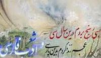 حفظ زبان در ادبيات فارسي