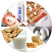 غذا و اهمیت آن از ابعاد مختلف