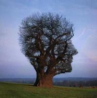روانشناسي: موجودی به نام انسان