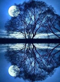 مهتاب moonlight