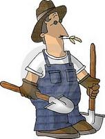 پسر کشاورز
