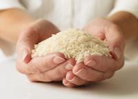 تغذيه: قد مصنوعی برنج